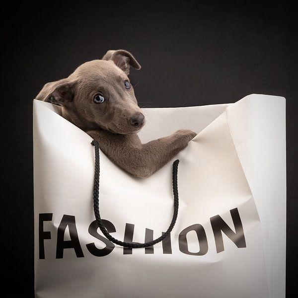 Doggy Bag van Nuelle Flipse