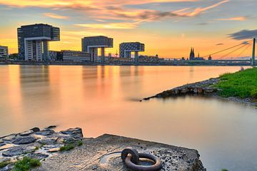 Kranhäuser in Köln am Rhein während Sonnenuntergang von 77pixels