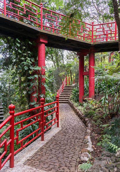 Japanese garden on maadeira island sur ChrisWillemsen