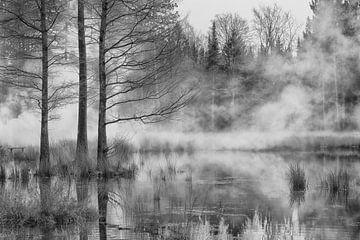 Nuenen Wälder mit Nebel von Wendy Hilven