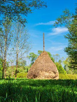 Hay stack in the Spreewald area, Germany van Rico Ködder