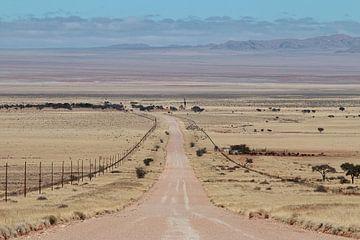 Endless road sur