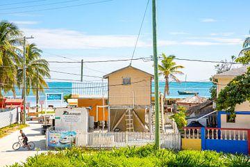 Vue sur la mer depuis l'hôtel sur le coloré Caye Caulker à Belize sur Michiel Ton
