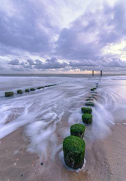 Structuren in de Zee sur
