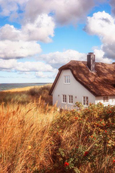 zomerdroomhuis van Daniela Beyer