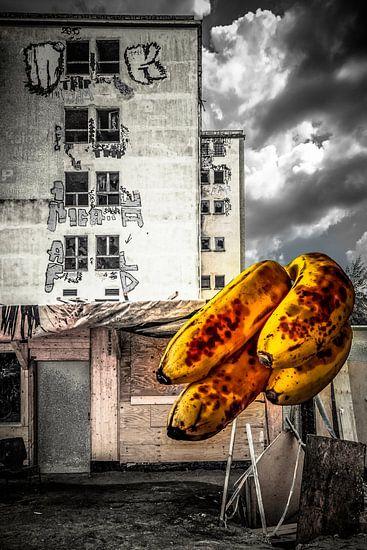 Als wir noch Bananen schmuggelten von Holger Debek
