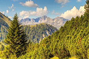 Uitzicht op de bergen Oostenrijk