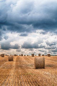 Hooibalen in het veld von Elles Rijsdijk