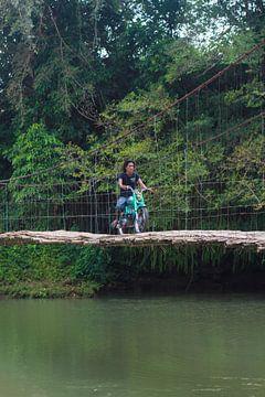 Bamboe brug van Martijn Stoppels