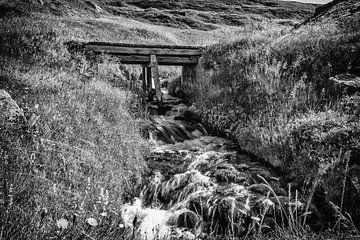 Under the bridge van István Lahpor