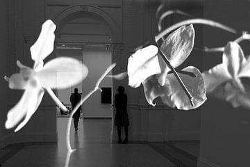 Orchidee dag van Marianna Pobedimova