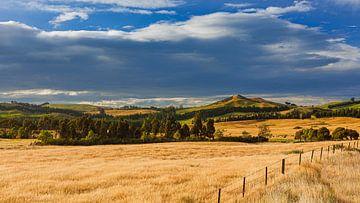 Onderweg in Nieuw-Zeeland van Henk Meijer Photography
