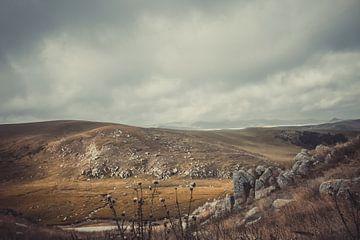 Ritoma, Tibetaans plateau II van Anahi Clemens