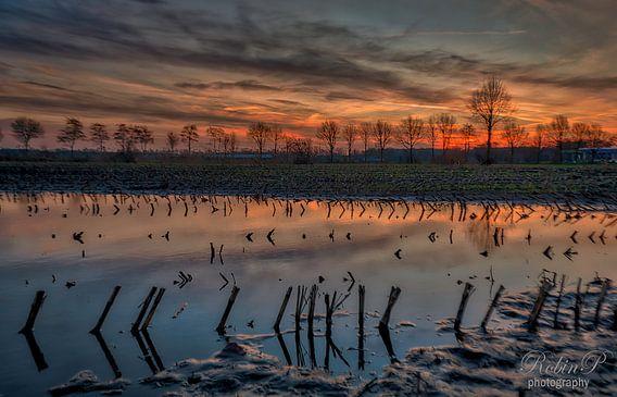 na de regen. van Robin Pics (verliefd op Utrecht)