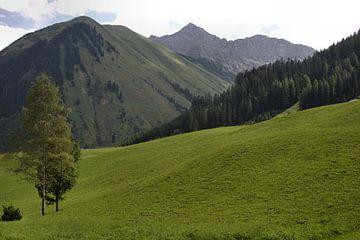 Oostenrijks landschap von Jeroen Grit