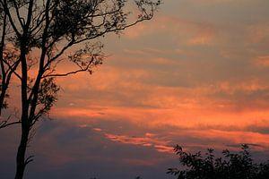 Avondrood , rode lucht , lucht , rood , natuur von Fred Vester