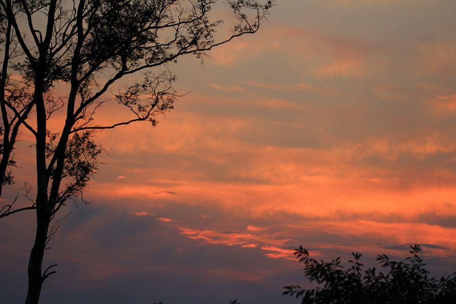 Avondrood , rode lucht , lucht , rood , natuur van Fred Vester