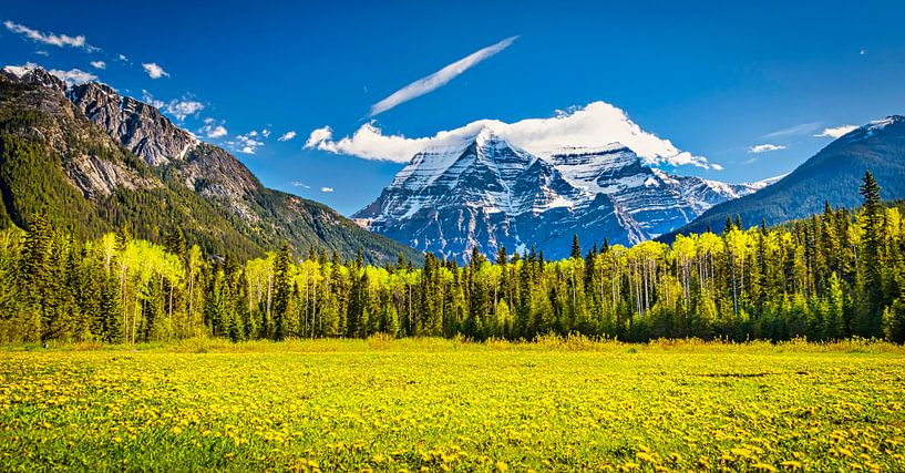 Mount Robson, British Columbia, Canada van Rietje Bulthuis