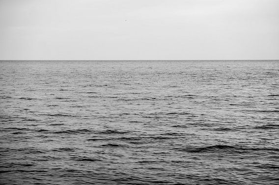 Black Sea.  von Tina Hartung