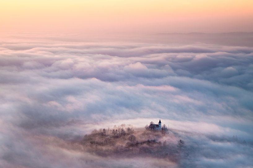 Mysterieuze mist van René Pronk