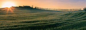Agriturismo Poggio Covili at Sunrise