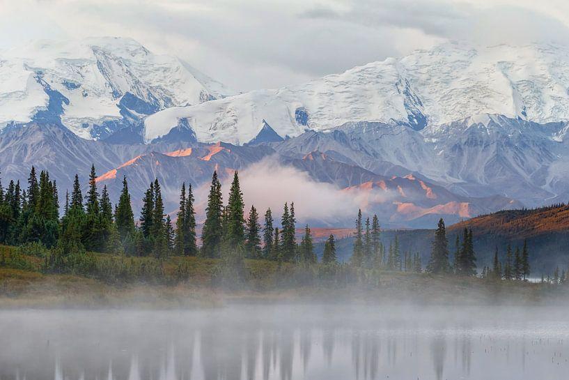 Denali Alaska von Menno Schaefer