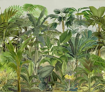Groen tropisch oerwoud van Andrea Haase