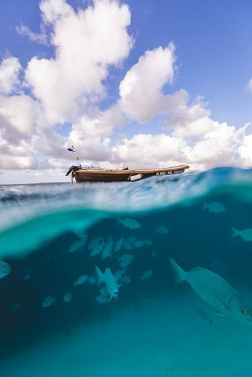 Klein Bonaire onderwater