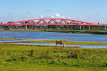 Hanzeboog pont ferroviaire Zwolle sur Anton de Zeeuw