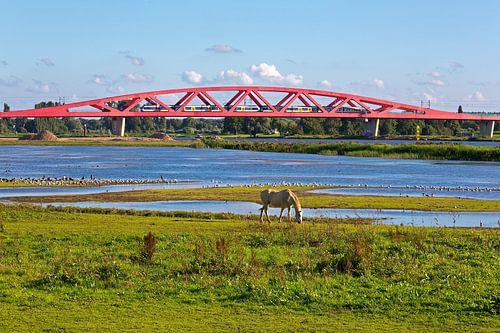 Hanzeboog spoorbrug Zwolle van
