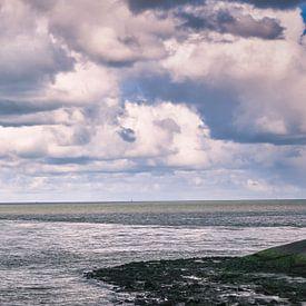Veerboot van en naar het waddeneiland Texel van eric van der eijk