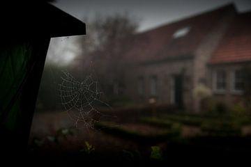 Mist in Kloetinge von Desiree Meulemans