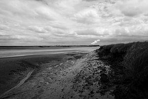 Zélande - Le pays noyé de Saeftinghe