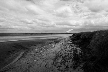 Zeeland - Ertrunkenes Land von Saeftinghe von Maurice Weststrate