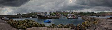 St Abbs en haven - Schotland (UK)