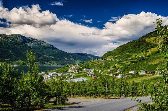 Lofthus, Noorwegen van Ricardo Bouman | Fotografie