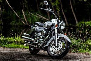 Suzuki Volusia VL800 VL800