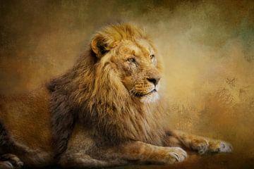 Prachtige leeuw