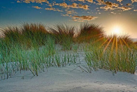 zicht op de duinen en de Noordzee tijdens de zonsondergang van eric van der eijk