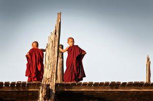 Junge Mönche auf der U bein-Brücke in Myanmar. von Ron van der Stappen