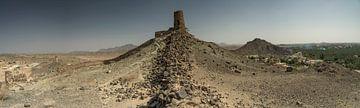 Scheidingsmuur met toren tussen woestijn en dadelpalmen van Ruud Overes