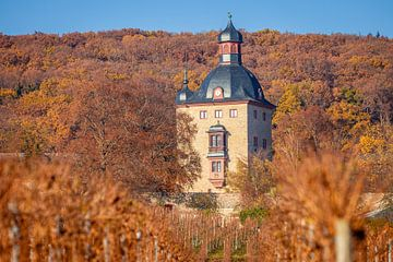 Schloss Vollrads in den Weinbergen oberhalb Oestrich-Winkel, Rheingau van Christian Müringer