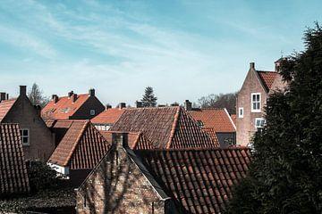 oranje en blauw; een bos van daken van Bert-Jan de Wagenaar