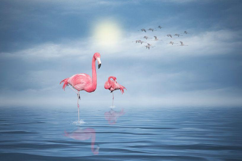 Flamingos (4) van Ursula Di Chito