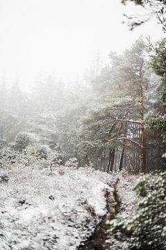 Lemelerberg in de sneeuw van Holly Klein Oonk