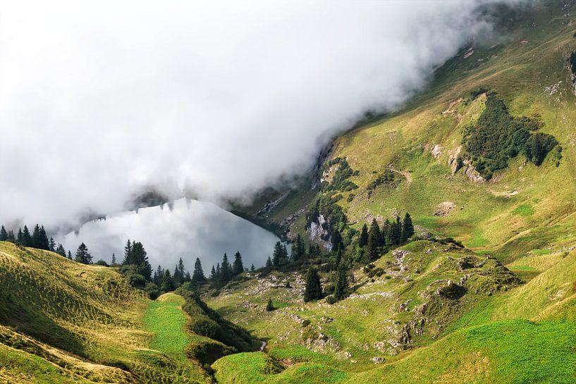 Fog is coming van Olha Rohulya