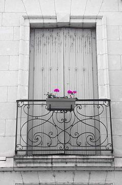 Fleur Francais von De Rover