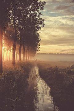 Een vroege mei morgen von Hilda van der Lee