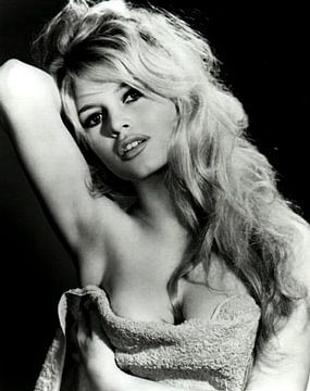 Brigitte Bardot von Brian Morgan