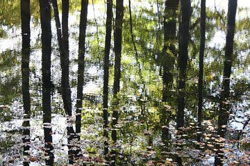 Reflectie van de bomen in het water in de herfst van Jessica van den Heuvel